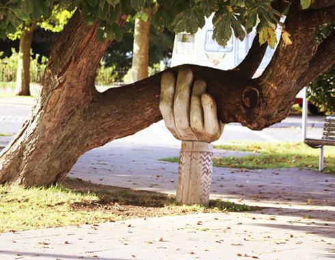 hand holding up tree