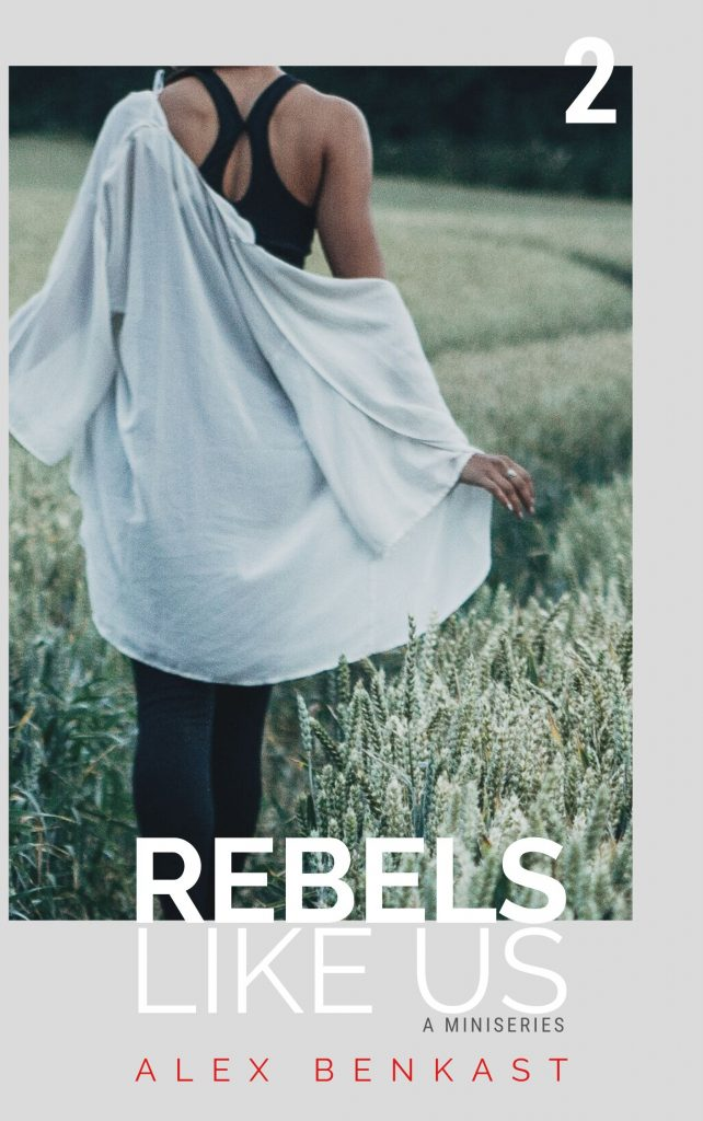 Cover Rebels Like Us Miniseries Volume 2