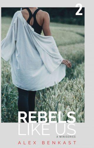 Cover Rebels Like Us Miniseries Volume 2