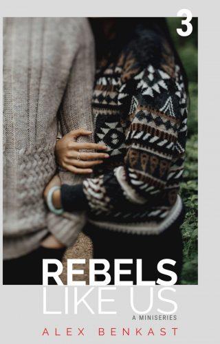 Cover Rebels Like Us Miniseries Volume 3